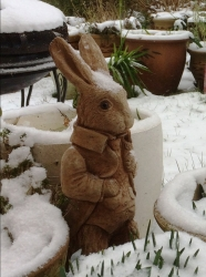 Snowy_rabbit