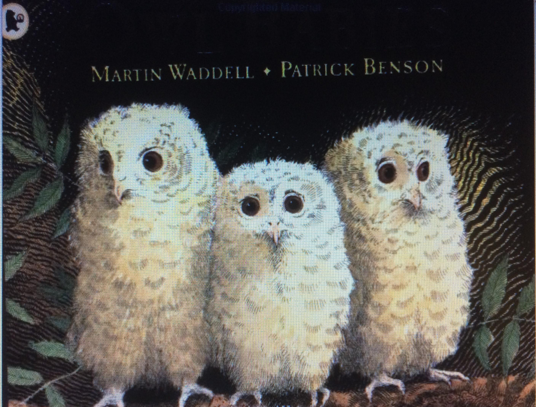 Owl Babies Waddell and Benson